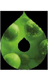 Mcquilkin Logo